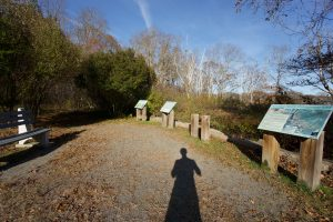 Barn Island Marsh Viewing Area