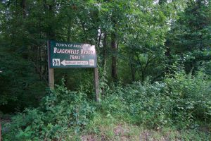 Blackwell Brook Trailhead