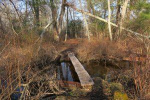 Brook Crossing at Sugar Brook