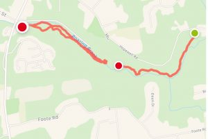 Cotton Hollow Trail Map