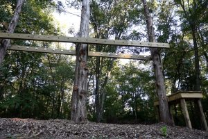 Giddings Park New Obstacle