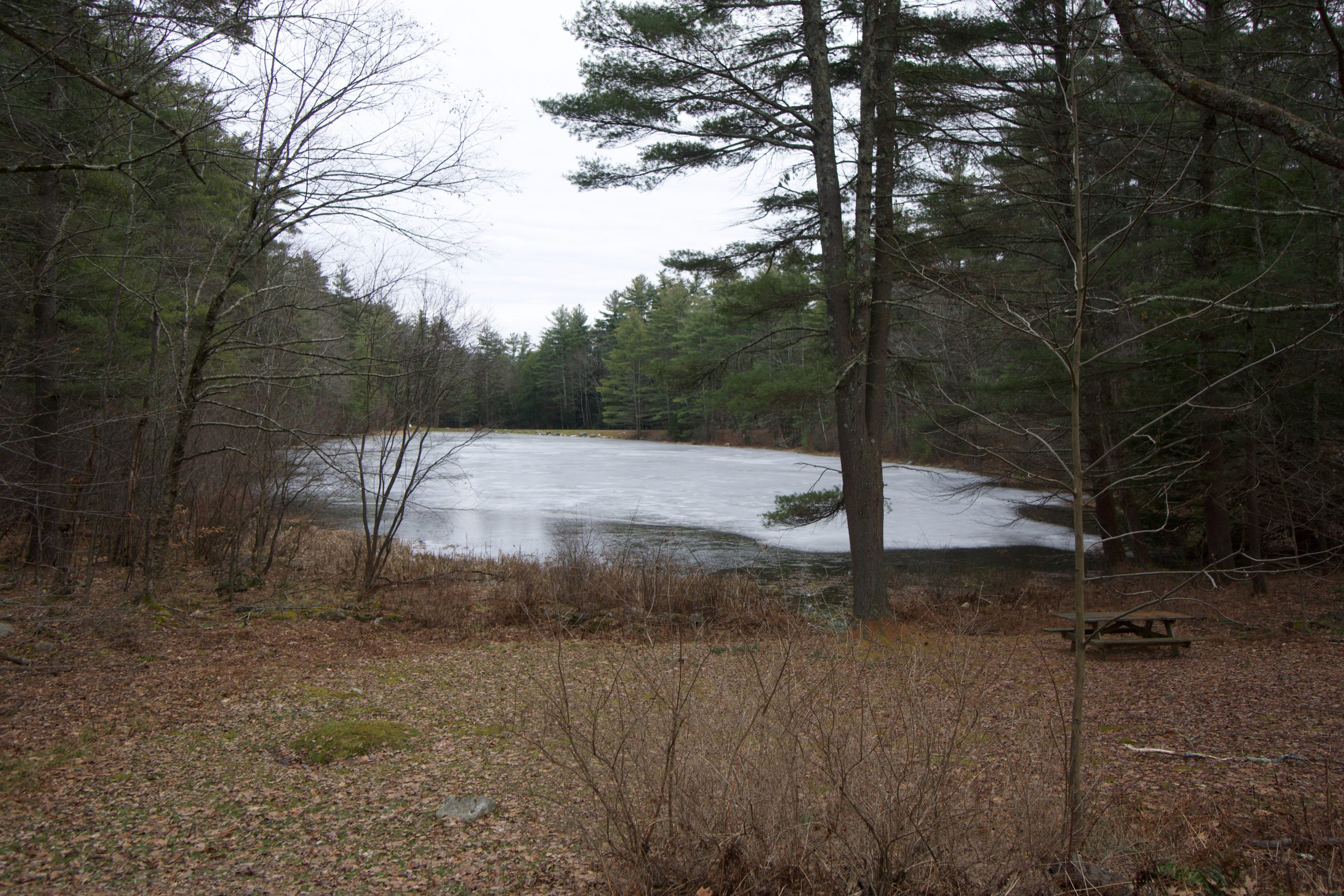 Haystack Mountain Pond