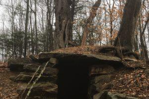 Hopemead Root Cellar