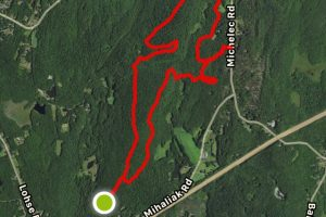 Nipmuck State Forest South Parcel