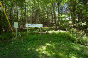 Selden Creek Ravine Trail