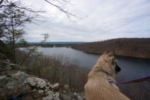 Shuttle Meadow Reservoir Overlook