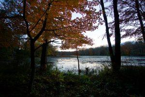 Southworth North Chapins Pond