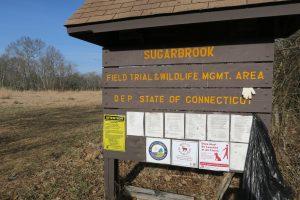 Sugar Brook Trailhead