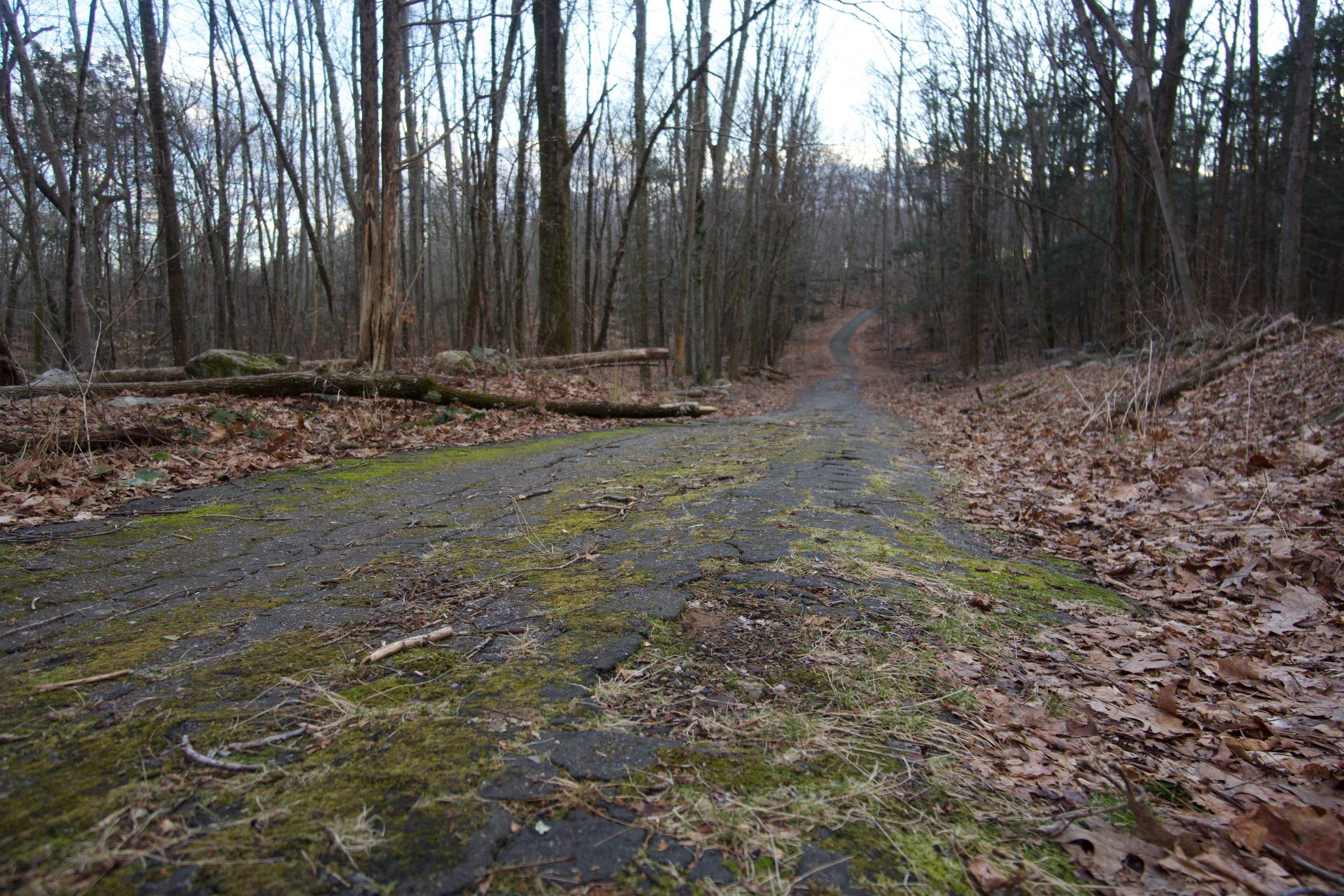 George Dudley Seymour Trail