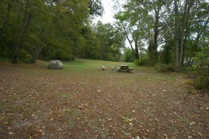 Hurd River Camping Area