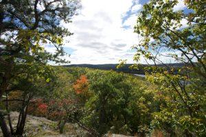 Hurd State Park Vista