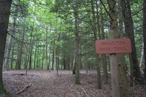 Knowlton Spur Trail