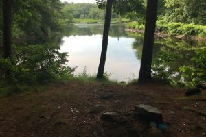 Mansfield Hollow along the River