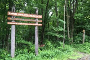 Rock Spring Trailhead