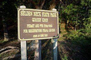 Selden Neck Sign