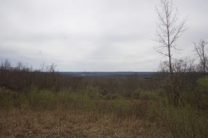 Hatch Lot Overlook
