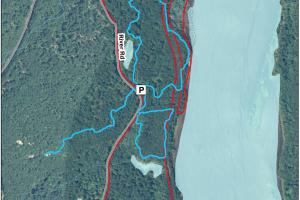 Hubbard Brook Preserve Trail Map