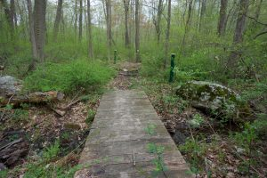 Patriots Park Trail
