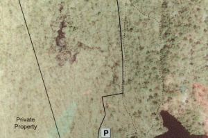 Billings Lake Trail Map