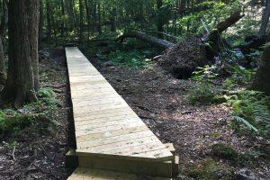 Whetten Woods New Boardwalk