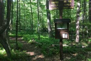 Whetten Woods Trailhead