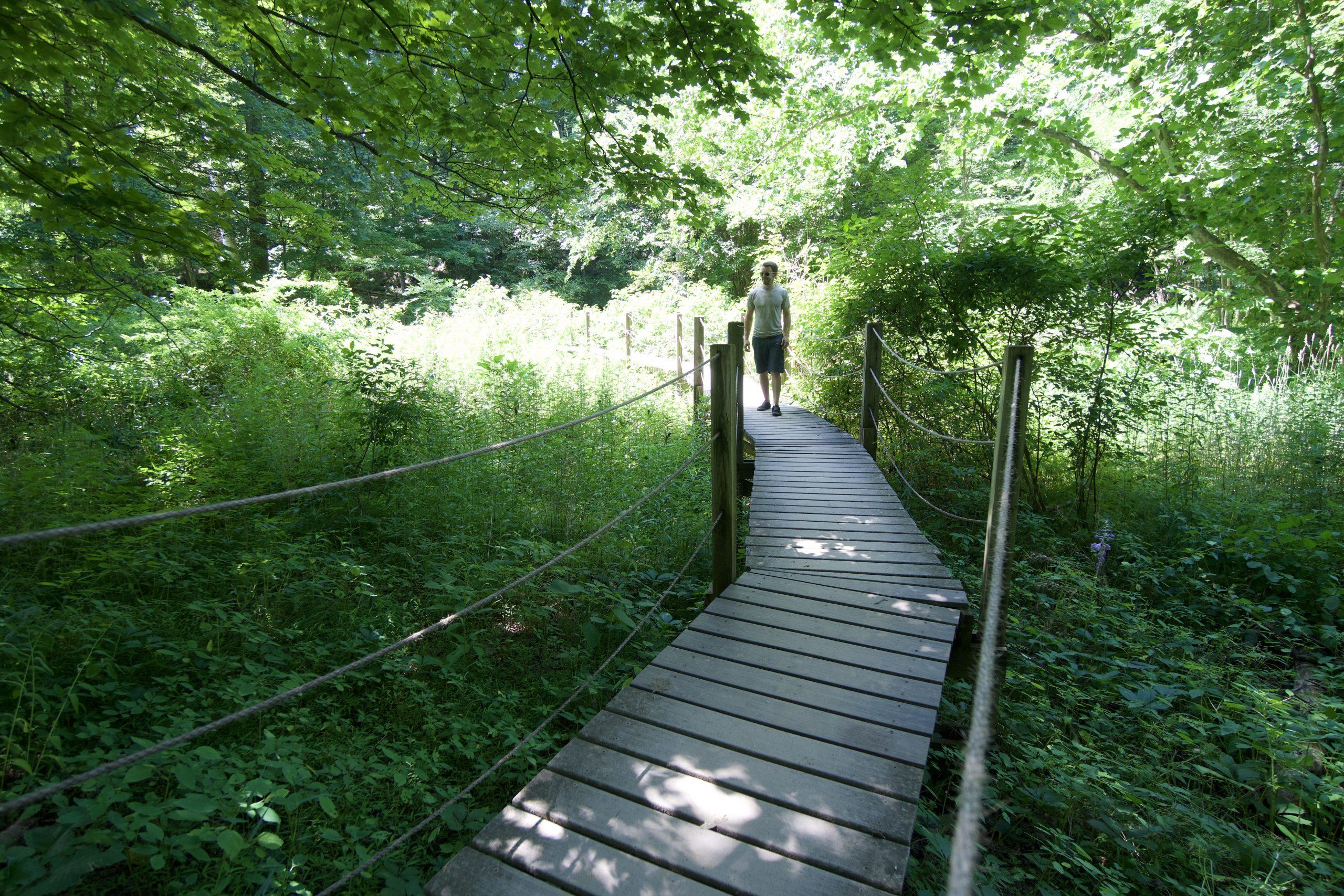 Bent of the River Bridge