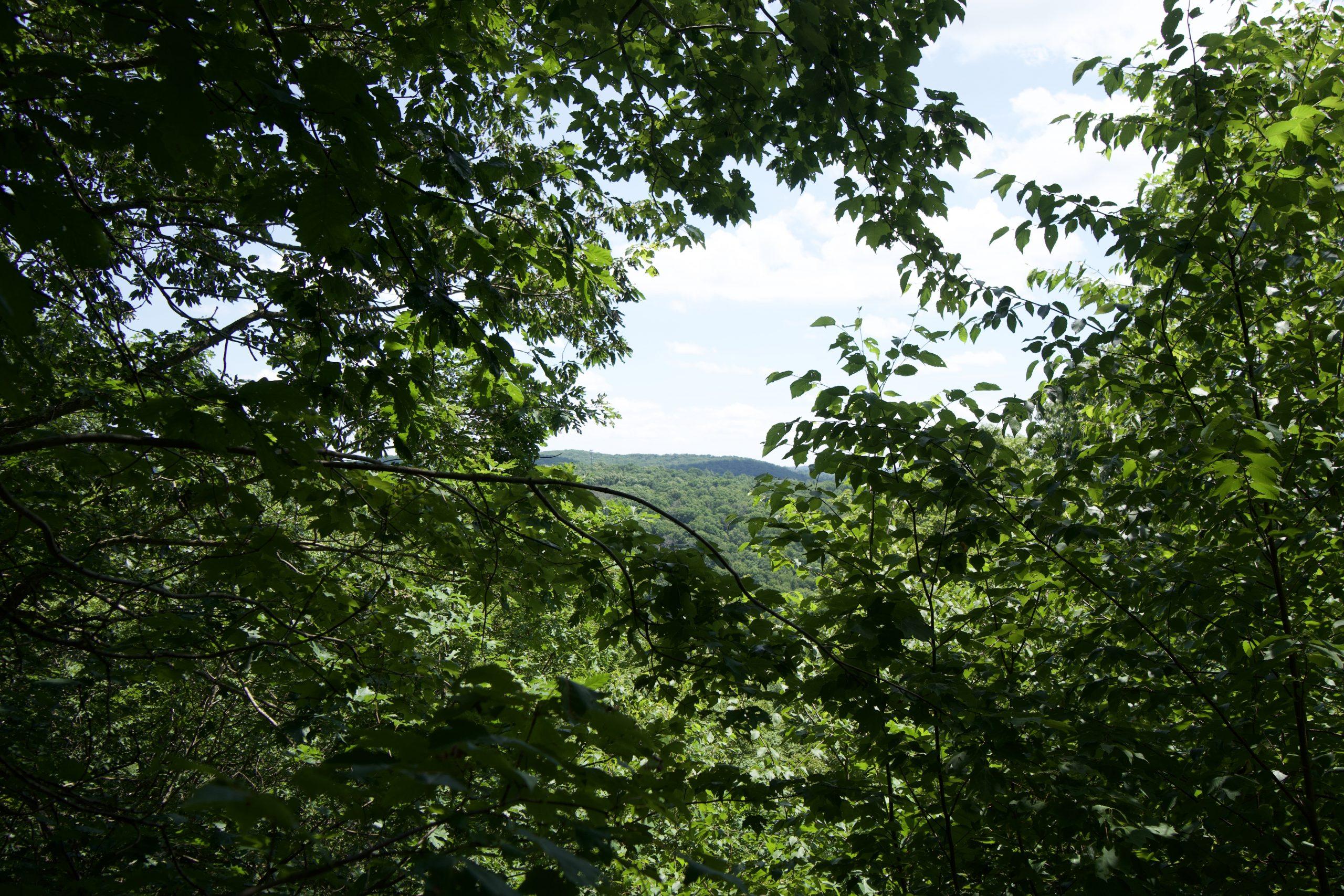 Bent of the River Overlook