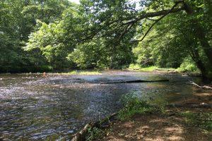 Heron Cove River View