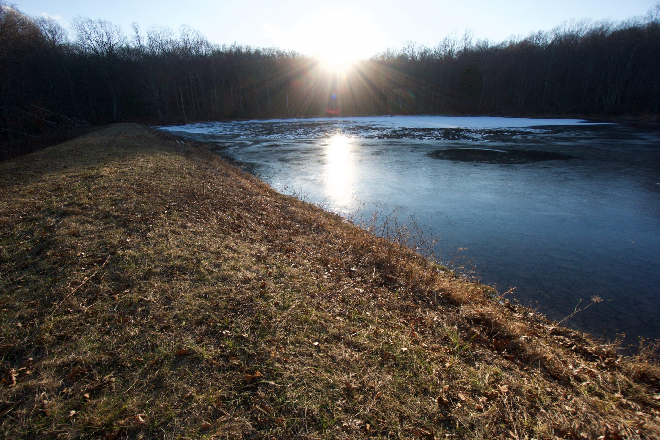 Crystal Pond Trout Pond